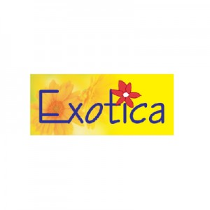 EXOTICA Real Estate Project by Runwal in Vijaypur